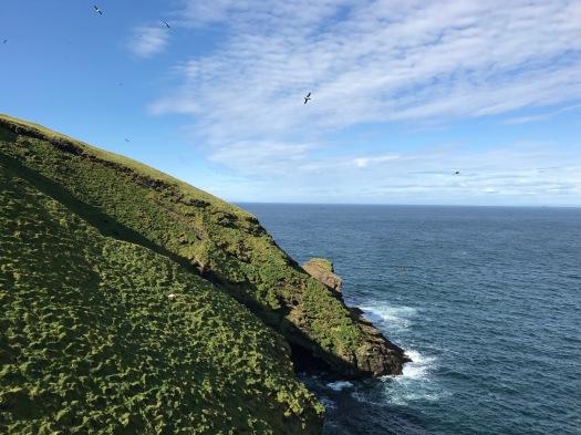 Vestmann Isles.jpg
